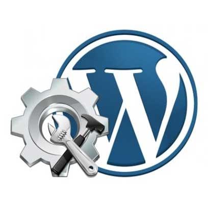 wordpress support plan
